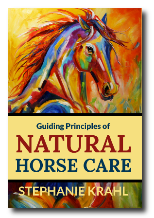 Natural Horse Care Guiding Principles by Soulful Equine