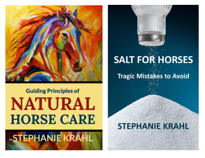 Salt for Horses and Guiding Principles of Natural Horse Care book bundle by Soulful Equine