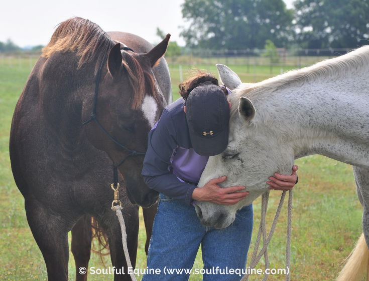 How to Deepen Your Relationship with Your Horse