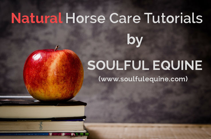 Natural Horse Care Tutorials by Soulful Equine